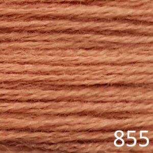 CP1855-1 Spice